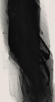 black_12481_l