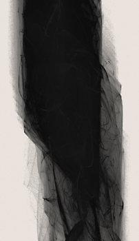 black_12483_l