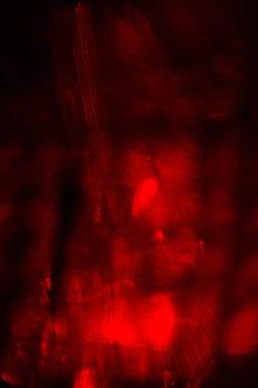 reflections_2159_l