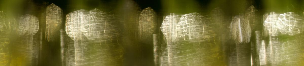 reflections_62b_xxl