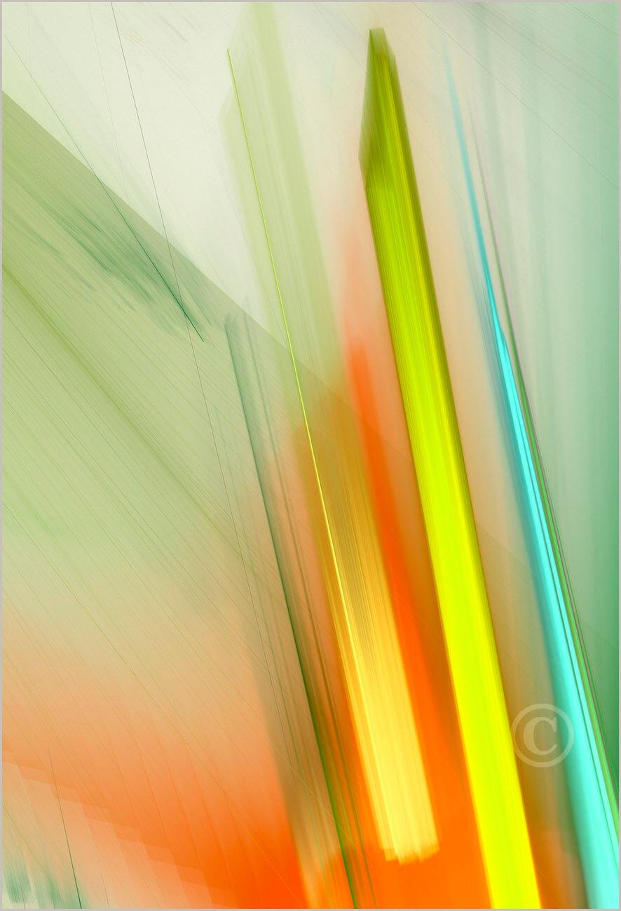 Colorshapes_F2_2945_M