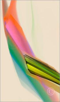 Colorshapes_F2_8510_L