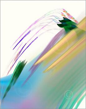 Colortrails_31609_M