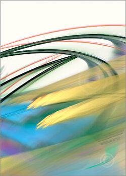 Colortrails_31930_M