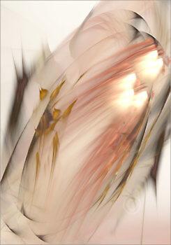 Fairydust_12005_M