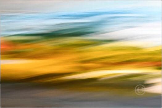Landscape_7N2236_L