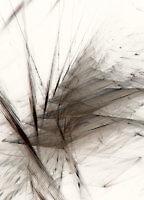 Leaves_17460_L | Rica Belna Artwork