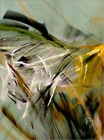 Organic_F2_8255_M | Rica Belna Artwork
