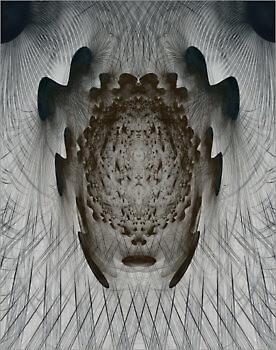 Ornamentic_9164_M