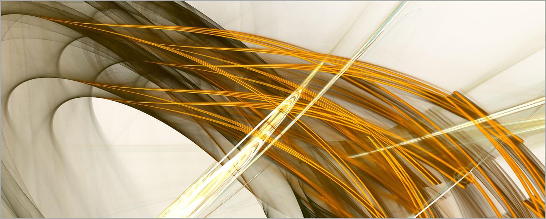 Senic_14496_XL