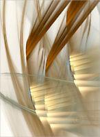 Senic_15419_M | Rica Belna Artwork
