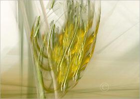 Senic_20113_M | Rica Belna Artwork