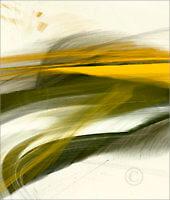 Shapes_F2_17914_L | Rica Belna Artwork