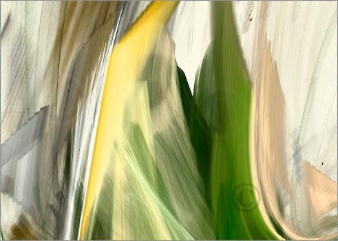 Shapes_F2_17942_L