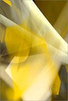 Shapes_F2_17978_L | Rica Belna Artwork