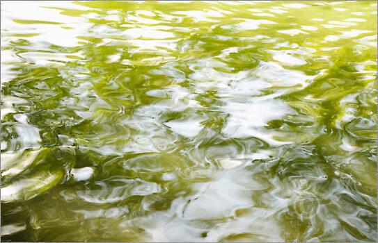 Water_0953_L
