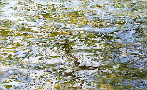 Water_F3391_XL