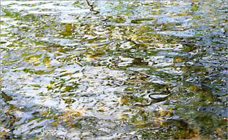 Water_F3392_XL | Rica Belna Artwork